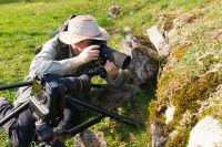 Eidechsenfotografie
