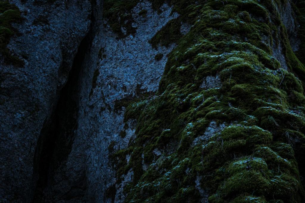 Moos und Fels